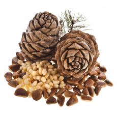 Кедровый орех отборный сырой 100 гр Испания развес