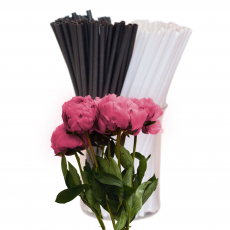 Палочки для кейк-попсов пластик 50 шт (500 мкр) черно-белые