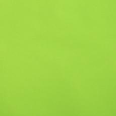 Сухая краска жирорастворимая зеленое яблоко 10 гр