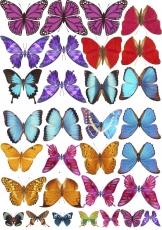 Вафельная картинка A4 Бабочки 15