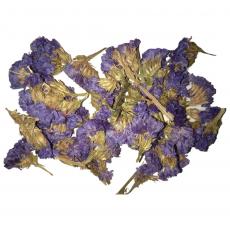 Цветки незабудки (сухоцветы) 50 грамм