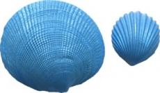 Силиконовый молд морская раковина