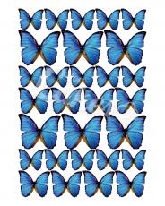 Вафельная картинка A4 Бабочки 5