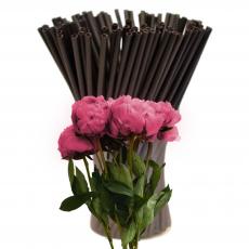 Палочки для кейк-попсов пластик 50 шт (250 мкр) черные