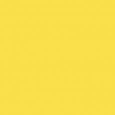 Сухая краска жирорастворимая желтая 10 гр
