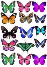 Вафельная картинка A4 Бабочки 3