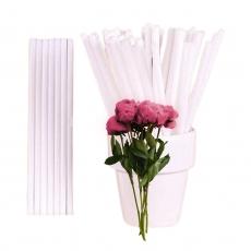 Палочки для кейк-попсов пластик 50 шт (250 мкр) белые