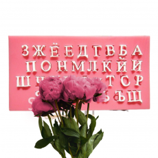 Силиконовый молд русский алфавит