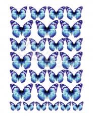 Вафельная картинка A4 Бабочки 11