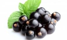 Замороженное пюре Черная смородина 1 кг Франция 100% натурпродукт