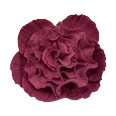 Сахарный цветок Пион средний бордо 8 см
