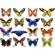 Вафельная картинка A4 Бабочки 4