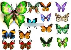 Сахарная картинка A4 Бабочки 5