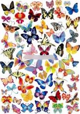 Сахарная картинка A4 Бабочки
